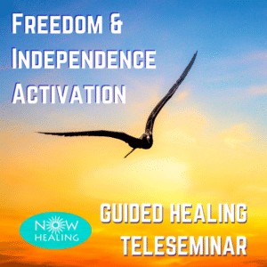 Freedom and Independence Activation - Guided Healing Teleseminar