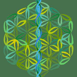 Healing Helix - Flower of Life - Now Healing with Elma Mayer